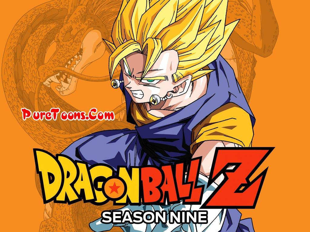 Dragon Ball Z (Season 9) Fusion and Kid Buu Sagas in Hindi Completed Series All Episodes free Download Mp4 & 3Gp